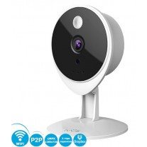 Внутренняя Wi-Fi, IP видеокамера 1.0 MPX, Micro SD, P2P, Запись в DropBox